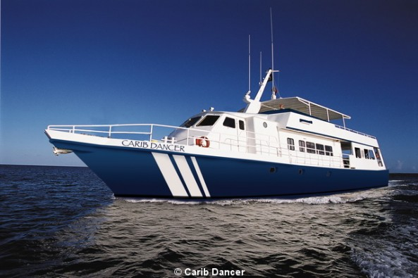 Dive Safaris and Scuba Cruises Bahamas Aggressor