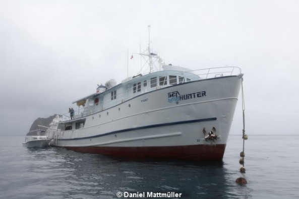 MV Sea Hunter  Liveaboards Main Image