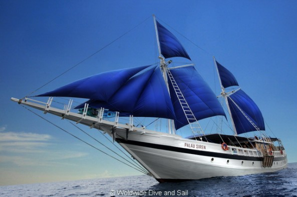 Dive Safaris and Scuba Cruises SY Palau Siren