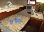 Liveaboards 23509508_carib_dancer_cabin640.jpg